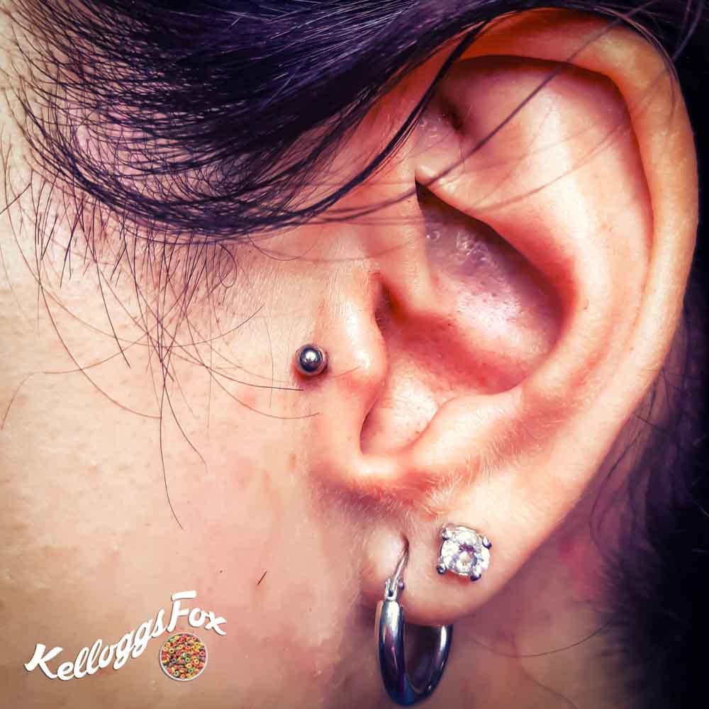 Kellogs Fox Body Piercer | Inside Tattoo Shop di Donna Mayla | Alba Adriatica | Tatuaggi | Piercing